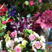 Floral Arragements: Ready to go or made to order